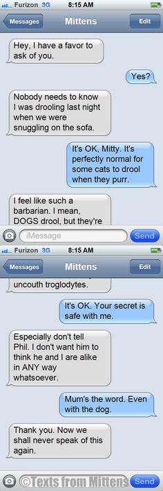 NEW daily Texts from Mittens: The Cat Drool Edition