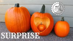 Pumpkin Pregnancy Announcement, Unique Baby Announcement, Pregnancy Videos, Pregnancy Test, White Pumpkins, Fall Pumpkins, Pink Salt Lamp, Pumpkin Family, Surprise Pregnancy