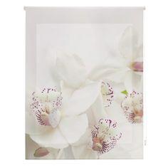 Room Orchid Sheer Roller Blind Ebern Designs Size : W x L Diy Bouquet Mariage, Diy Wedding Bouquet, Diy Wedding Flowers, Boho Bedroom Decor, Bohemian Decor, Decoration Hall, Sheer Roller Blinds, Diy Luminaire, Stoff Design