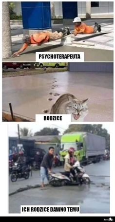 Polish Memes, Very Funny Memes, Best Memes, Jokes, Lol, Humor, House, Hilarious Memes, Husky Jokes