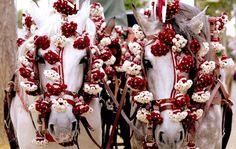 feria-de-abril-sevilla-caballos.jpg (711×450)