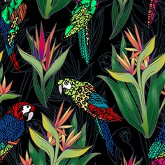 The BOP by Benjamin Castro - This tropical design includes a layered psd file in seamless repeat. Tropical Design, Tropical Prints, Creative Textiles, Textile Design, Print Design, Print Patterns, Original Art, Royalty, Repeat