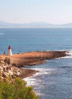 Le Parc marin de la Côte Bleue : une perle du littoral provençal