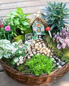 DIY fairy garden ideas are whimsical, pretty, and easy to make. Here are 20 DIY fairy garden ideas to try at home. Indoor Fairy Gardens, Mini Fairy Garden, Fairy Garden Houses, Miniature Fairy Gardens, Fairy Gardening, Fairy Garden Plants, Garden Path, Fairy Gardens For Kids, Gardening Tips