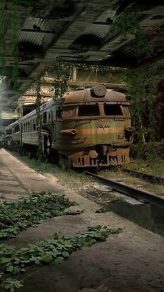 Trains, Teddy Bears and abandoned places Abandoned Buildings, Abandoned Mansions, Old Buildings, Abandoned Houses, Abandoned Places, Abandoned Castles, Old Trains, Haunted Places, Train Tracks
