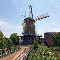 Molen De Korenbloem, Sommelsdijk.