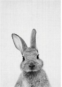 Home Decor Wall Painting Gray Rabbit Oil Painting Wall Hanging Canvas No-Frame # Animals And Pets, Baby Animals, Cute Animals, Toys Drawing, Hanging Canvas, Tier Fotos, Weimaraner, Cocker Spaniel, Akita