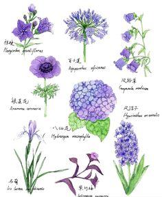 这是来自《花色美涂——七个颜色画出您的水彩花园》中紫色花绘制方法的展示大图,这个绘画过程超简单,每一朵花的形状都各具特色,好容易就画出来了耶~~~爱死个人儿~~~小伙伴们,一起来画画吧~~~