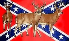 CONFEDERATE FLAG REBEL DEER by Sportsworld. $2.54. Flag for inside or out. Vivid Colors 3x5 ft. Southern Pride, Confederate Flag, Pallet Crafts, Skull Art, Garden Flags, Outdoor Gardens, American Flag, Vivid Colors, Deer
