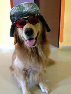 Nice glasses buddy