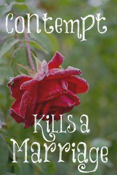 Contempt Kills a Marriage