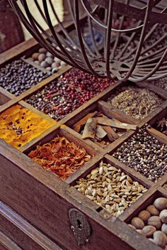 treasure trove of herbs and spices