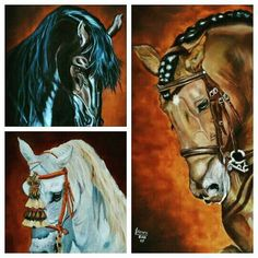Three horse triology