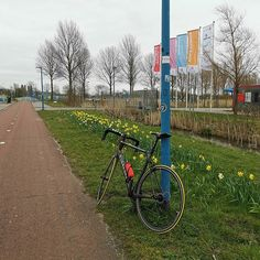 Vandaag was het donderdag 19 maart 2020 een dag waarop het dodenaantal in Nederland naar aanleiding van het coronavirus op liep naar 76. Het is verschrikkelijk en waar eindigt het ? Ik weet het niet... ik ben #vanmiddag toch maar even op de racefiets gestapt voor een ritje van ruim 30 kilometer door onder andere de Eemshaven waar ik even samen met mijn #fiets bij het station bij de borkumlijn langs was gekomen.. Ik wou eerst meer kilometers afleggen maar onderweg dacht ik van dikke doei. Gistere