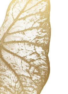 This item is unavailable Gold Leaf Art, Gold Wall Art, Leaf Wall Art, Gold Art, Botanical Wall Art, Botanical Prints, Minimal Photo, Bohemian Art, Large Art