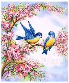 Blue Birds and Apple blossoms
