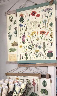 Diy Wall Art, Hanging Wall Art, Wall Decor, Etsy Vintage, Floral Wall Art, Botanical Prints, Vintage Floral Prints, Vintage Walls, Vintage Wall Art