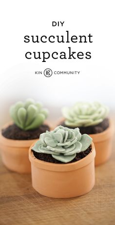 DIY Succulent Cupcakes  //  Click for video tutorial