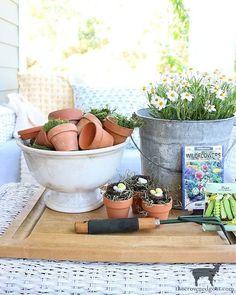 CoCo (@thecrownedgoat) • Instagram photos and videos Hand Scrub, Diy Scrub, Spring Home Decor, Spring Crafts, Country Cottage Garden, Lavender Garden, Spring Desserts, Porch Decorating, Decorating Ideas