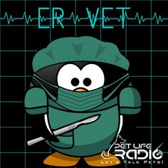 ‎ER Vet - Stories from the animal ER on Pet Life Radio (PetLifeRadio.com): ER Vet - Episode 117 Monitoring Pets at Home with New Technology on Apple Podcasts
