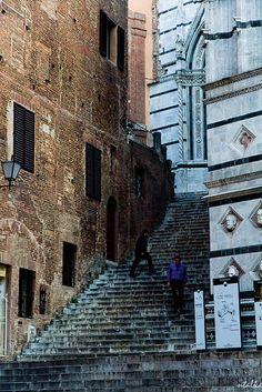 Siena ~ Tuscany ~ Italy