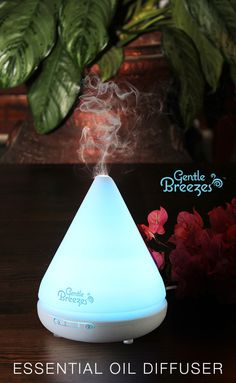 Simply the best essential oil diffuser for beginners and the more advanced.  Comes with a complimentary bonus eBook which includes some amazing diffuser recipes like Health & Beauty Care recipes, Calming Mood & Relaxing recipes, Sensual & Romantic recipes and many more.
