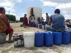 O Noticiario RN: RN enfrenta pior seca dos últimos 100 anos, diz Em...