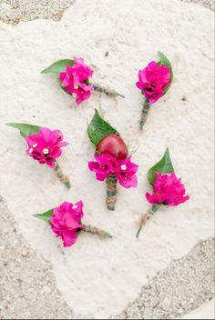 #buttonhole #peonies #bougainvillea #kefaloniawedding #destinationweddings My Wedding Planner, Destination Wedding, Bougainvillea, Our Wedding Day, Event Styling, Buttonholes, Amazing Flowers, Fairy Lights, Peonies
