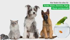 Unser Tiers hat tierisch günstige Preise ... Unser Tiershop bietet Ihnen viele Shops, wie den Hunde-, Katzen-, Kleintier-, Vogel- und Pferdeshop, mit über 1.000 preisgünstigen Artikeln. Bei uns finden Sie Nassfutter, Trockenfutter und vieles mehr.