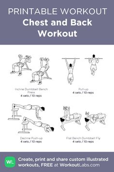 Chest and Back Workout · WorkoutLabs Fit Chest And Back Workout, Chest Workout Routine, Chest Workouts, Easy Workouts, Chest Exercises, Gym Workout Chart, Wod Workout, Step Workout, Workout Fitness