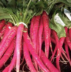Conoce más sobre las zanahorias