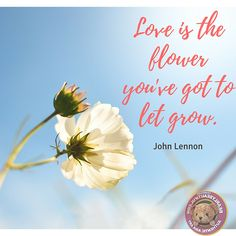 Love is the answer, and you know that for sure; Love is a flower, you've got to let it grow. #BearlyBeautiful #PicOfTheDay #LoveIsFlowers