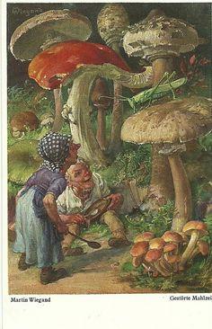 Gnomes meet grasshopper