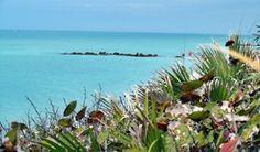 Looking out from the boardwalk over Caspersen Beach, near Venice, Florida