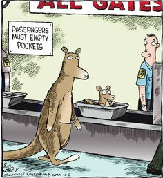 It's hard to travel when you're a kangaroo.
