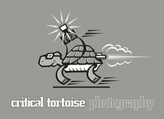 Critical Tortoise Corporate Portrait, Industrial Photography, Meet The Team, Advertising Photography, Newcastle, Professional Photographer, Tortoise, Image, Tortoise Turtle