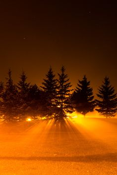 Light through the fog, Ottawa, Canada
