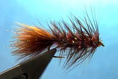 fly wooley bugger. For more fly fishing info follow and subscribe www.theflyreelguide.com Also check out the original pinners site and support