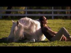 Humanima : L'homme qui danse avec les chevaux - Documentaire animalier _ Magalie Delgado et Frédéric Pignon.