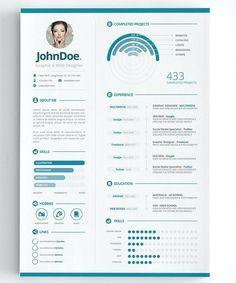 Visual Infographic Resume
