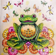 Frog Enchanted Forest. Sapo Floresta Encantada. Johanna Basford: