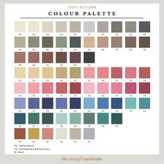 If you have just discovered that you are a Soft Autumn in the seasonal colour analysis, find out which colours look best on you. Fall 2017 Colors, Summer Colors, Dark Autumn, Soft Autumn Color Palette, Autumn Colours, Color Type, Seasonal Color Analysis, Instagram Challenge, Autumn Clothes