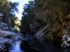 Drupkelders - losely translated into Dripping Cellars, are rock pools in the Knysna forest. Knysna, Rock Pools, Paths, Seasons, Adventure, Nature, Outdoor, Natural Pools, Outdoors