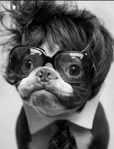 A toupee, when used correctly, can actually be a conversation-starter! This guy's got the nerd/cool thing down.