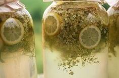 "How to Make a Naturally Fermented ""Champagne"" from Elderflowers"