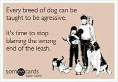 It's time to stop blaming the wrong end of the leash. Dogs aren't the bad ones. It's people who are terrible.