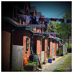 "North End Nova Scotians value living ""in the box"". Halifax, NS, Canada."