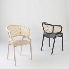Contemporary chair / in molded plywood / in beech / wicker - FRANTZ 881 - TEKHNE Srl