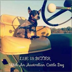 Life is Better.....