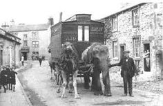 One can only imagine what the three boys in Gargrave High Street thought more than 100 years ago when a camel and elephant passed by their front… Okapi, Three Boys, Camels, Lions, Past, Elephant, Street View, Country, Circus Circus